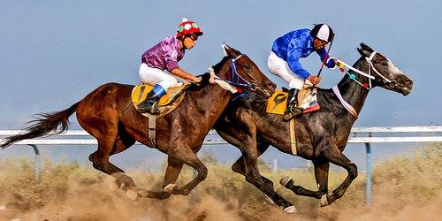 horse racing betting site 2 - سایت شرط بندی اسب سواری با بهترین شرایط و امکانات
